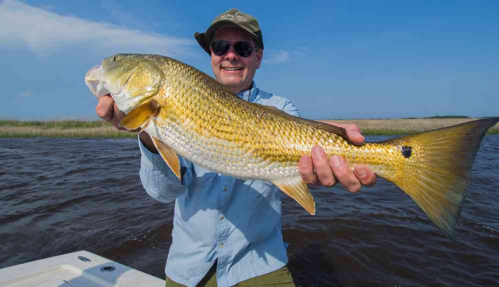 george-redfish4