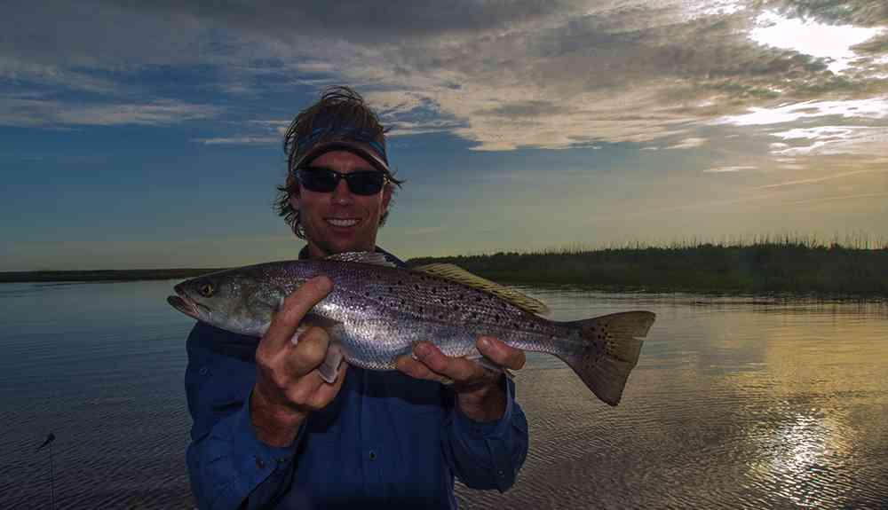 reimer-trout2