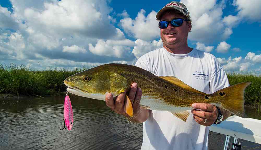 stevie-redfish