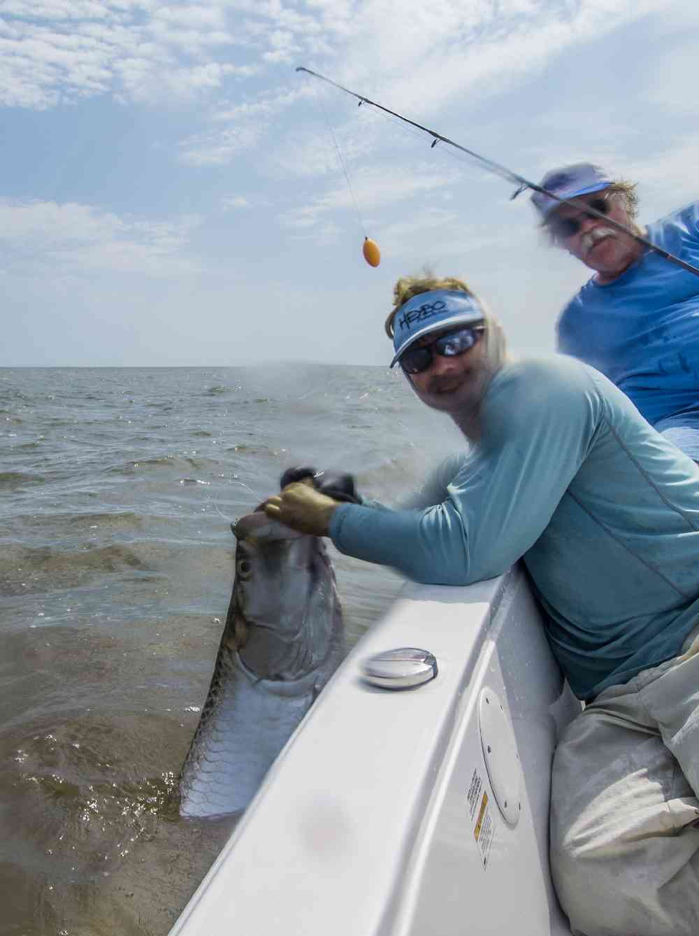 Tarpon fishing in full swing carolina guide service for Tarpon springs fishing charters