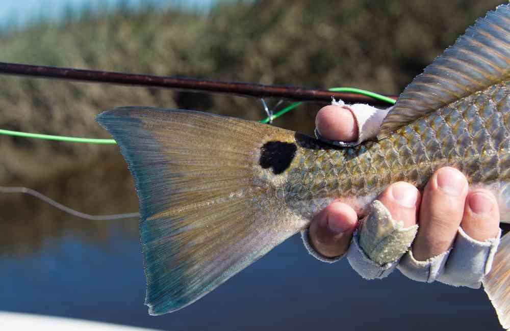Gary-Slade-Flyfishing-05