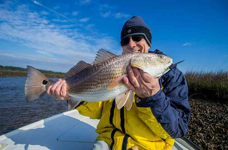 Don-Redfish-on-Fly-800x525-2