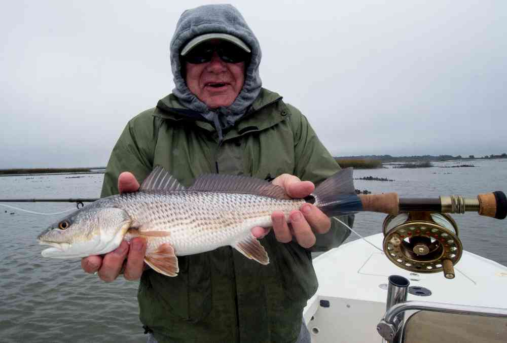November fly fishing for redfish in myrtle beach for Fishing in november