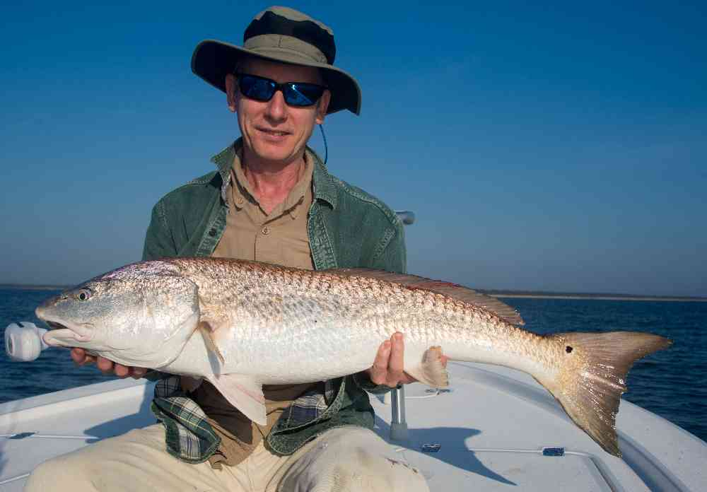 bull-redfish-winyah-bay-091