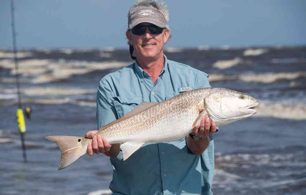 fall fishing report for pawleys island and georgetown