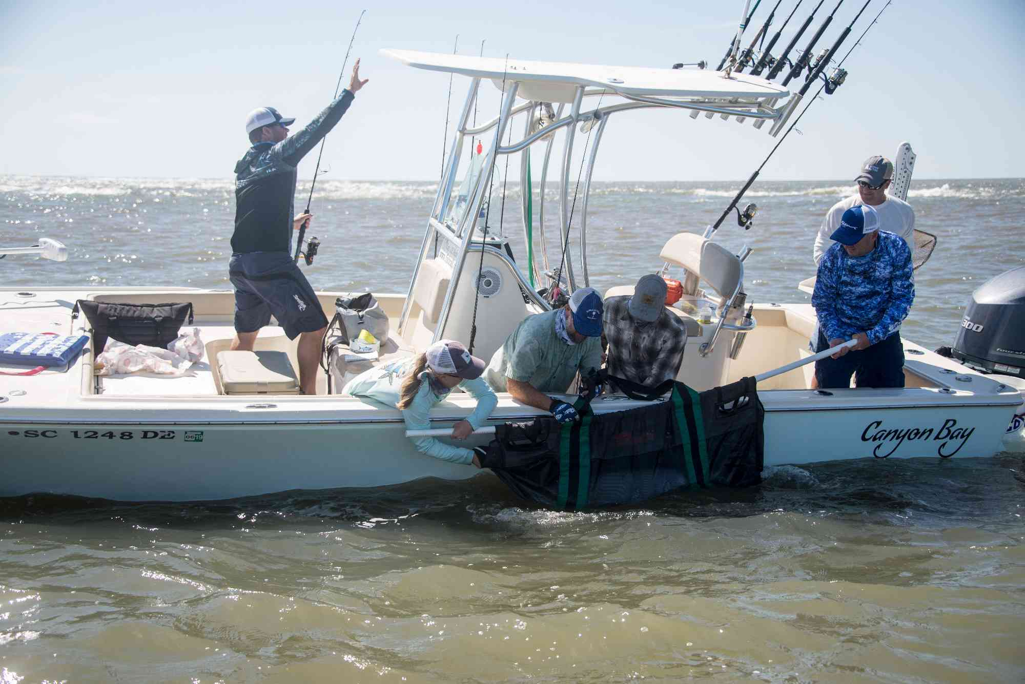 tarpon tagging south carolina
