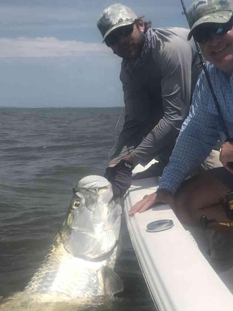 Tarpon Fishing South Carolina