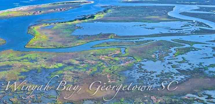 a picture of Georgetown – Winyah Bay with Carolina Guide Service