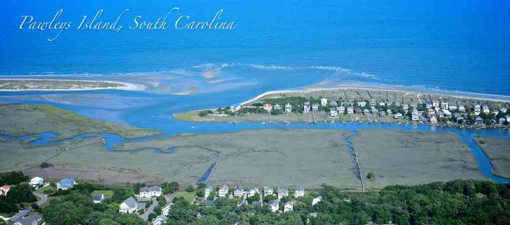 a picture of Pawleys Island Fishing Charters with Carolina Guide Service