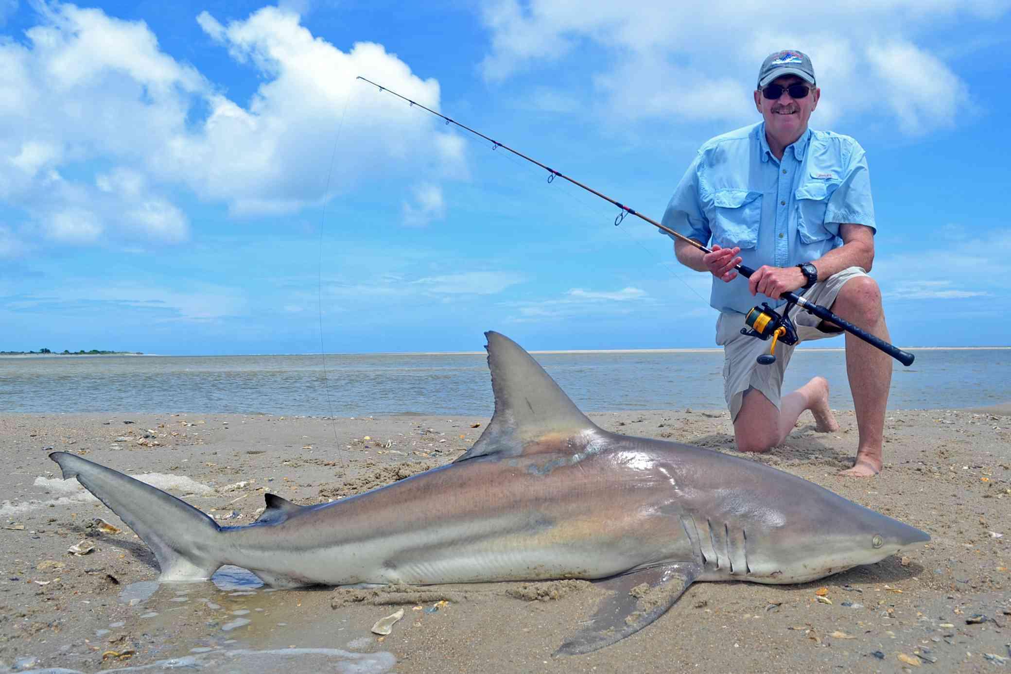 Blacktip Shark Myrtle Beach Fishing Fishing Charters 01
