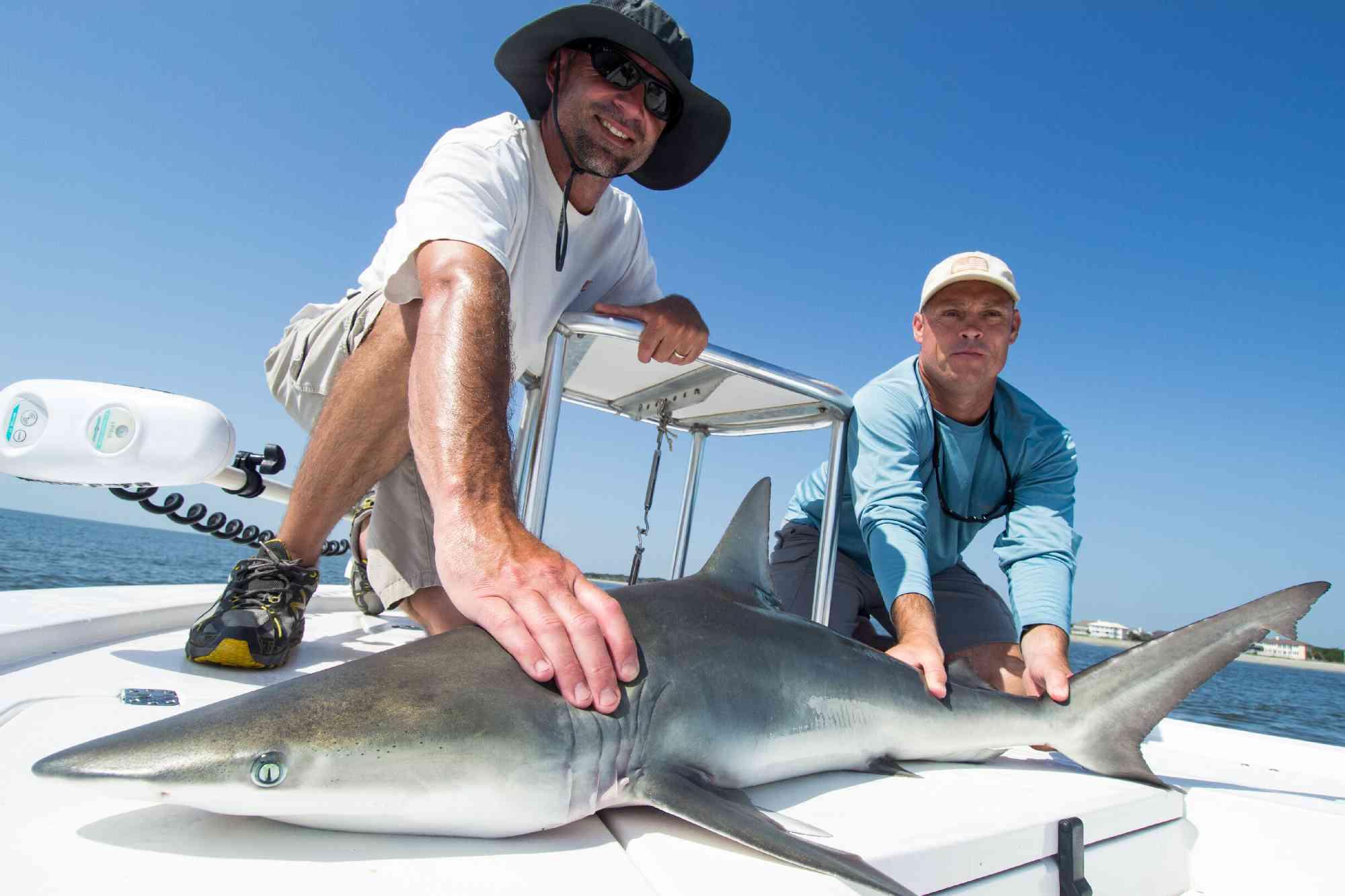 Myrtle-Beach-Shark-Fishing-011