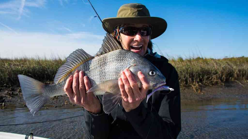 a picture of Black Drum with Carolina Guide Service