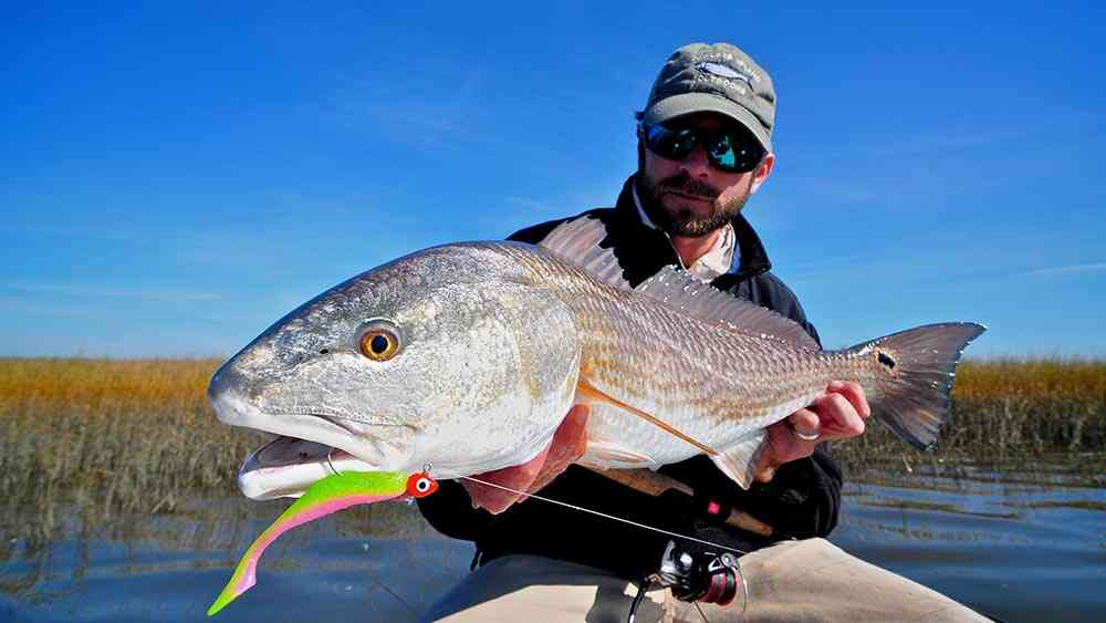 a picture of Inshore/Light Tackle Fishing Charters with Carolina Guide Service