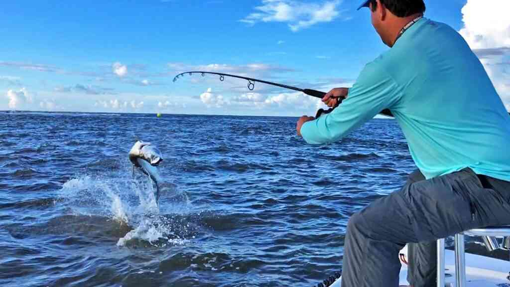 a picture of Tarpon Fishing Charters with Carolina Guide Service