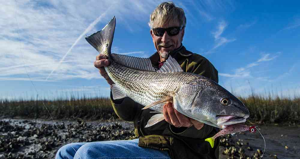 a picture of Redfish with Carolina Guide Service